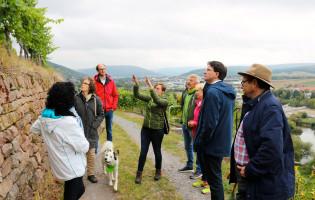 Weinberg-Exkursion am Erlenbacher Hochberg (2)