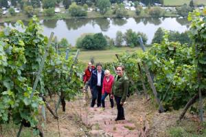 Weinberg-Exkursion am Erlenbacher Hochberg (3)